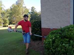 Trimming at Haven Fellowship Church Workday 2019