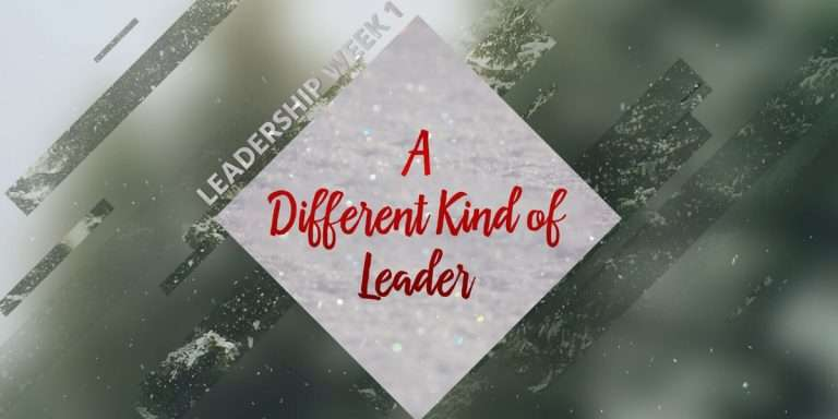 A Different Kind of Leader Sermon