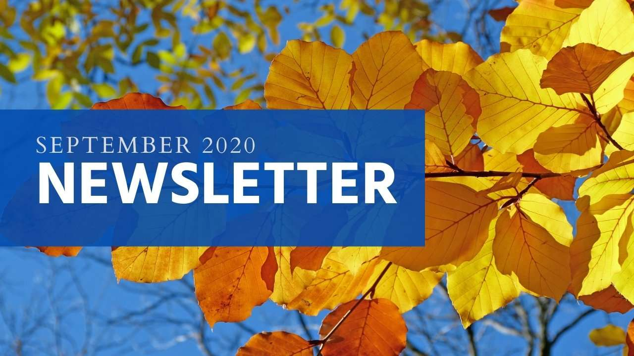 September 2020 Newsletter