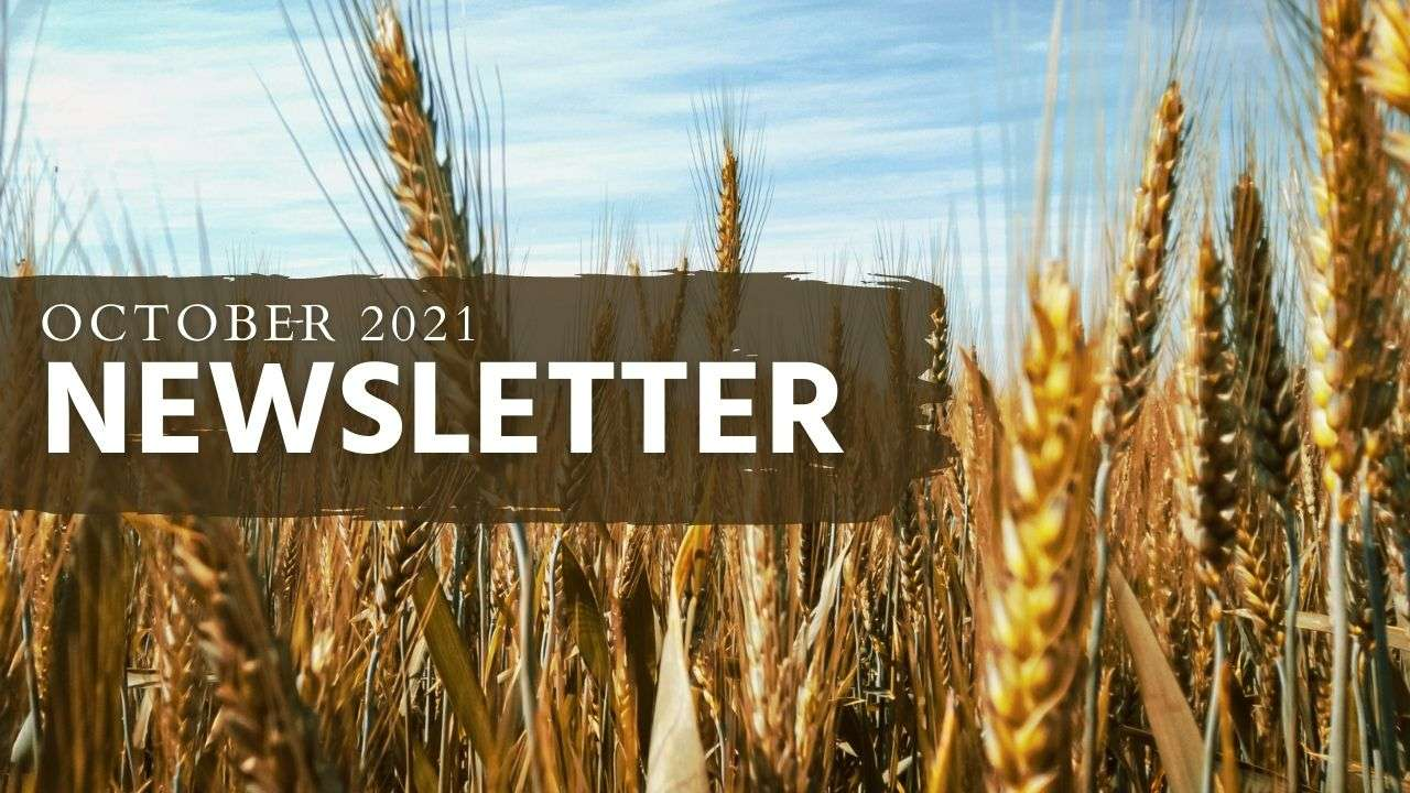 October 2021 Newsletter Web