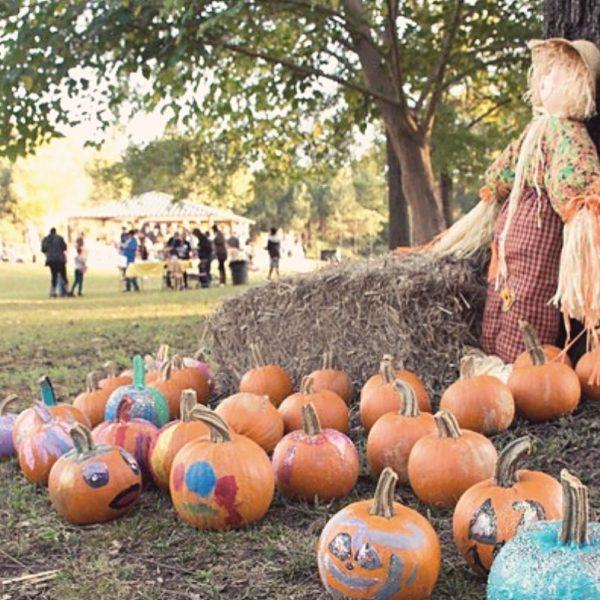 Fall Festival Conyers, GA   Haven Fellowship Church